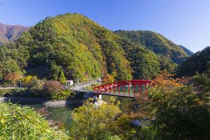 秋の奥多摩湖にかかる峰谷橋の写真素材 [FYI04873601]