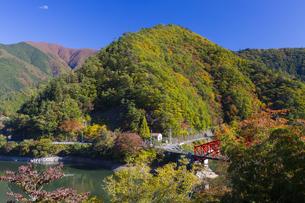 秋の奥多摩湖にかかる峰谷橋の写真素材 [FYI04873610]