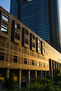 東京都庁の写真素材 [FYI04873751]