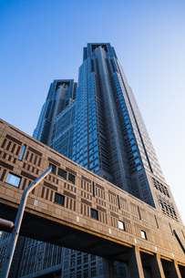 東京都庁の写真素材 [FYI04873759]