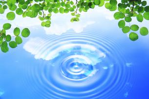 水滴と葉っぱと波紋の写真素材 [FYI04873956]