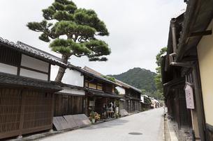 近江商人の町並と見越しの松の写真素材 [FYI04873964]