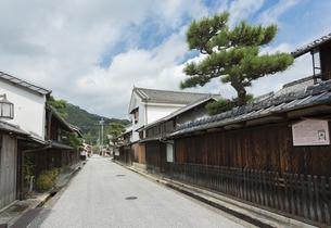 近江商人の町並と見越しの松の写真素材 [FYI04873965]