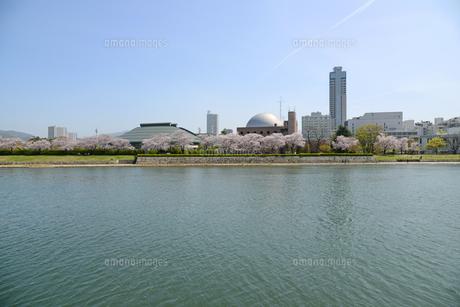 広島市の街並みと太田川 桜の写真素材 [FYI04873975]