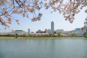 広島市の街並みと太田川 桜の写真素材 [FYI04873976]