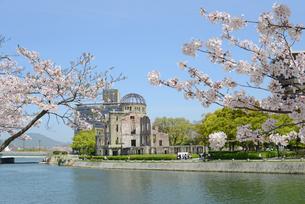 原爆ドームと元安川 桜の写真素材 [FYI04873978]