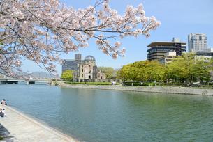 原爆ドームと元安川 桜の写真素材 [FYI04873979]
