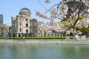 原爆ドームと元安川 桜の写真素材 [FYI04873981]