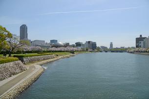 太田川畔の桜並木と広島市街並みの写真素材 [FYI04873983]