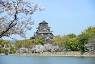 広島城の天守と桜の写真素材 [FYI04873985]