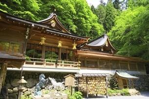 新緑の貴船神社本宮の写真素材 [FYI04874198]