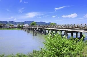 新緑の嵐山と渡月橋の写真素材 [FYI04874235]