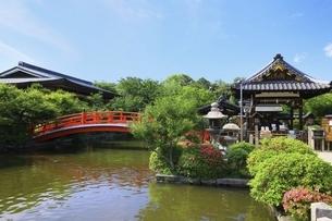 新緑の神泉苑の写真素材 [FYI04874240]