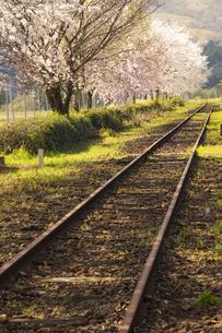 春の長陽駅の写真素材 [FYI04874314]