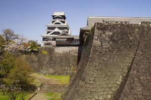 春の熊本城の写真素材 [FYI04874320]