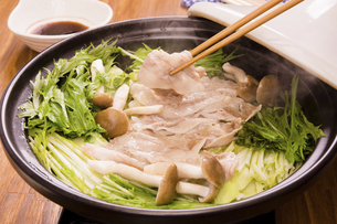 キャベツと豚肉の酒蒸しの写真素材 [FYI04874356]