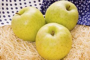 王林りんごの写真素材 [FYI04874359]