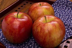 ふじりんごの写真素材 [FYI04874376]