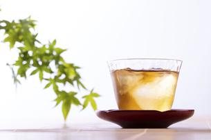 日本の夏の飲み物の写真素材 [FYI04874779]