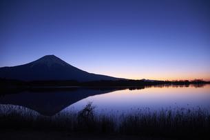 田貫湖からの夜明けの写真素材 [FYI04874813]