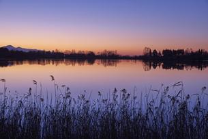 田貫湖からの夜明けの写真素材 [FYI04874814]