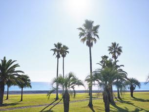 七里御浜ふれあいビーチの写真素材 [FYI04874892]