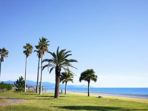 七里御浜ふれあいビーチの写真素材 [FYI04874893]