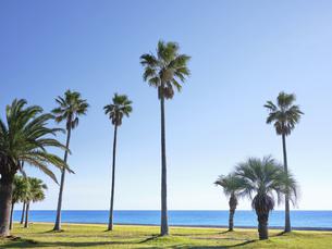 七里御浜ふれあいビーチの写真素材 [FYI04874895]