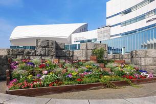 横浜みなとみらいの都市風景 パシフィコ横浜国立大ホールの写真素材 [FYI04875021]