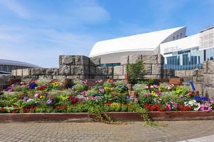 横浜みなとみらいの都市風景 パシフィコ横浜国立大ホールの写真素材 [FYI04875022]