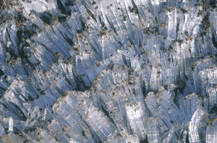 霜柱(北海道・標茶町)の写真素材 [FYI04875138]