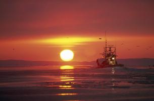 朝日と漁船(北海道・知床)の写真素材 [FYI04875142]