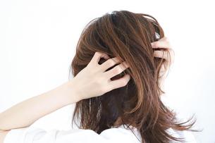 髪の毛を触る女性の写真素材 [FYI04875306]