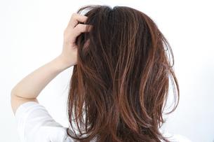 髪の毛を触る女性の写真素材 [FYI04875310]