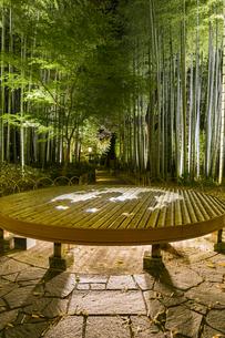 修善寺温泉 新緑に囲まれライトアップされた竹林の小径と切り絵アートが投影された円形ベンチ(円形ベンチ広場から東側への風景)の写真素材 [FYI04875328]