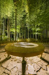 修善寺温泉 新緑に囲まれライトアップされた竹林の小径と切り絵アートが投影された円形ベンチ(桂川側への風景)の写真素材 [FYI04875338]