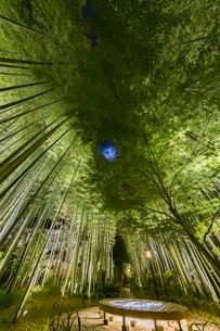 修善寺温泉 新緑に囲まれ月夜にライトアップされた竹林の小径と円形ベンチ(東側から西側への風景)の写真素材 [FYI04875348]