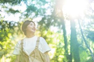 森の木々を見上げる女性の写真素材 [FYI04875903]