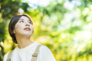 森の木々を見上げる女性の写真素材 [FYI04875913]