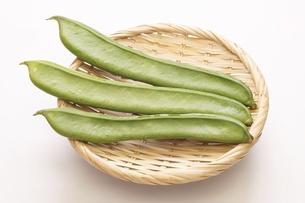刀豆(なたまめ)品種は白刀豆の写真素材 [FYI04875918]