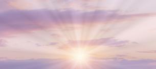 朝の光の写真素材 [FYI04876358]