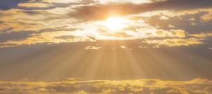 朝の光の写真素材 [FYI04876362]