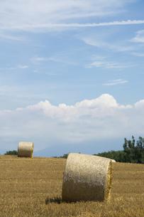 収穫が終わったムギ畑と麦稈ロールの写真素材 [FYI04876448]