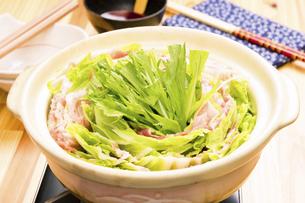 豚バラと白菜の重ね鍋の写真素材 [FYI04876566]