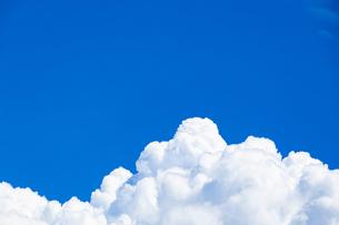 真夏の空の写真素材 [FYI04876919]