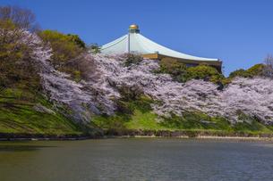 日本武道館と桜の写真素材 [FYI04877129]
