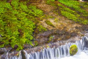 姫川源流の流れの写真素材 [FYI04877196]