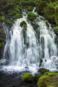 元滝伏流水の写真素材 [FYI04877206]