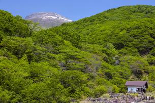 新緑の茶臼岳の写真素材 [FYI04877310]