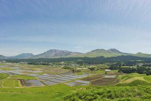 阿蘇五岳とカルデラに広がる水田の写真素材 [FYI04877479]